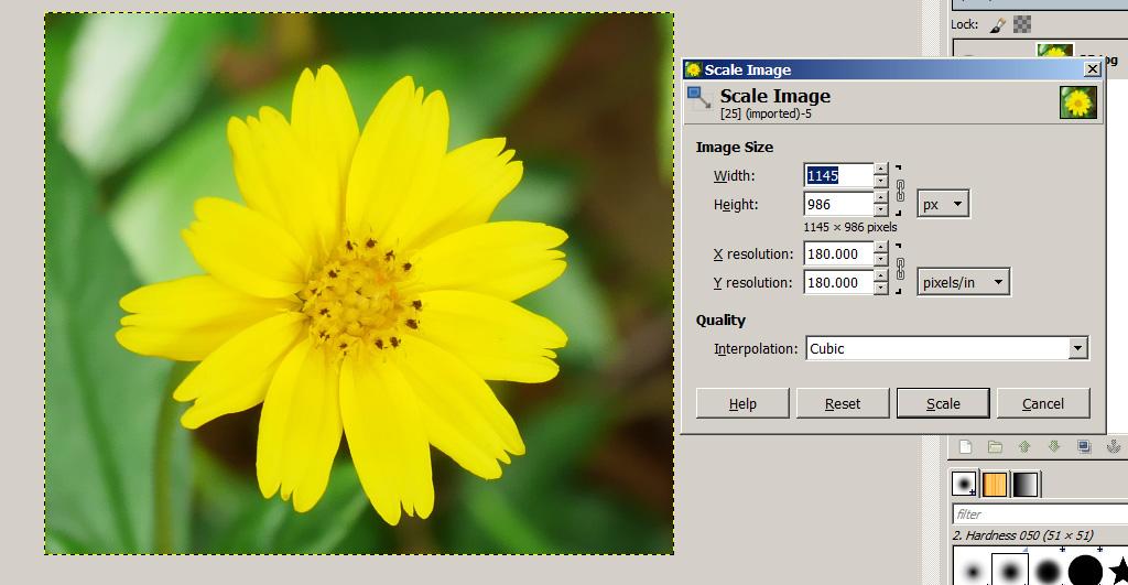 GIMP, ลดขนาดภาพ gimp, gimp ปรับขนาดภาพ